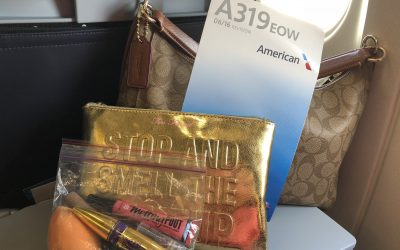 Carry On Bags Makeup Essentials approved by TSA